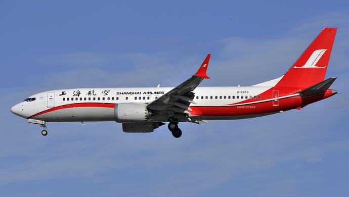 国内各航空公�9.���_国航东航等9家公司已明确停飞波音737-8,上航暂停新机引进--上观