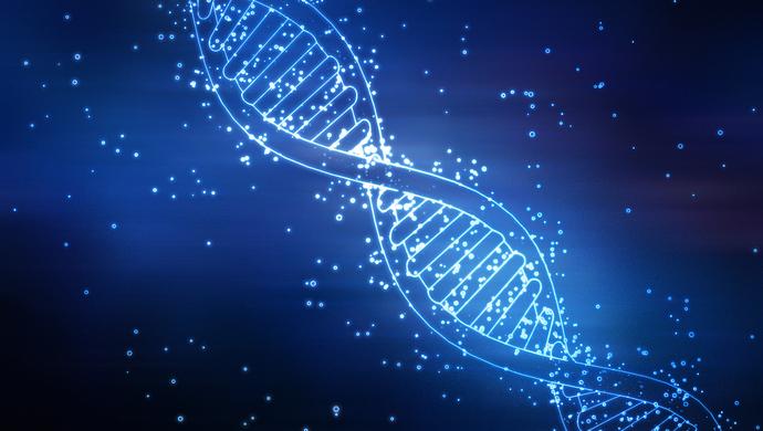 光照抑制小鼠肿瘤生长?上海科学家开发远红光控制基因编辑系统